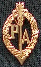 A gold brooch custom-made using the Pemberton Arrow as a design feature