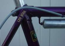 Seat cluster showing model name on top of seatstay
